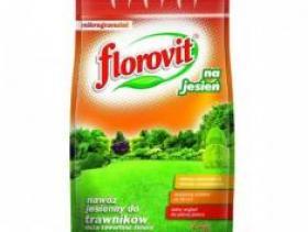 Удобрение Florovit осеннее для газонов